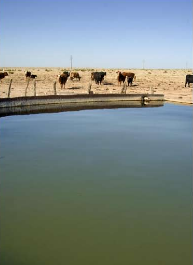 Pyatt Well Ranch