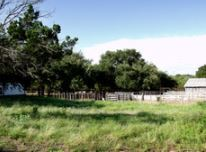 Oak Tree Ranch